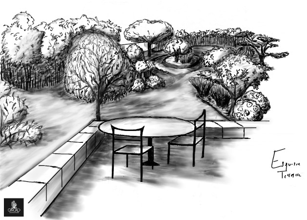 croquis; esquisse d'illustration; terrasse; gingko